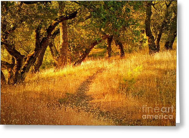 The Late Afternoon Walk Greeting Card