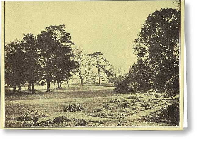 The Lawn Of Down House Greeting Card