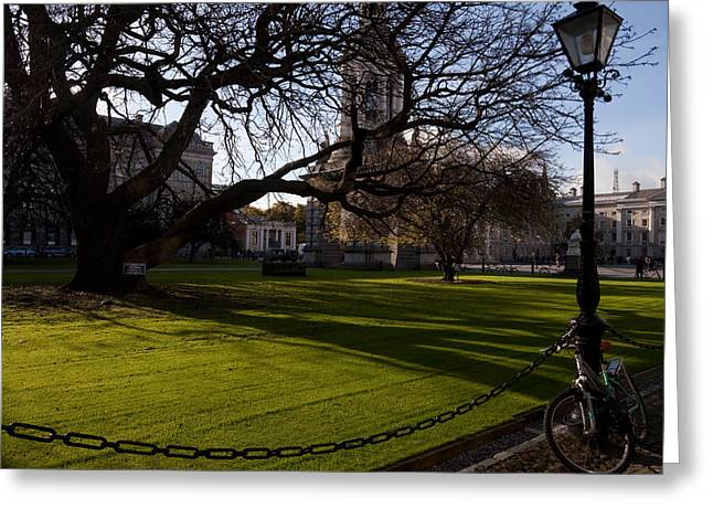 The Library Square, Trinity College Greeting Card by Panoramic Images