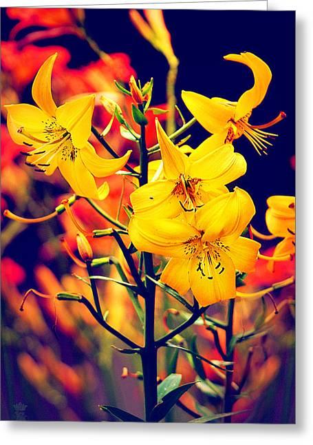 The Lilium Garden - Yellow Whoppers Greeting Card by Li   van Saathoff