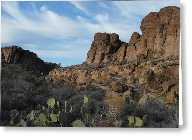 The Living Desert Of Arizona Greeting Card