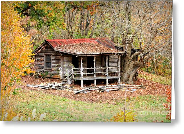 The Log Cabin In The Woods Greeting Card by Reid Callaway