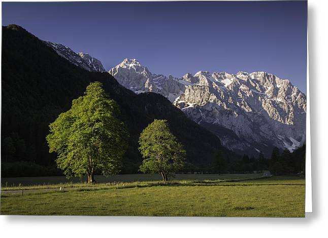 the Logar valley Greeting Card by Davorin Mance