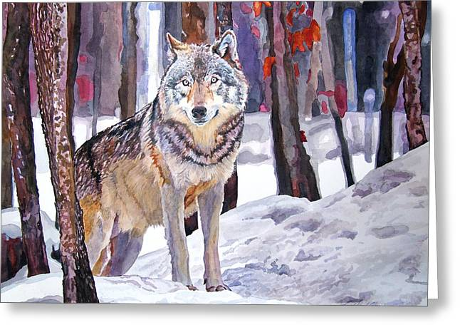 Wildlife Watercolor Greeting Cards - The Lone Wolf Greeting Card by David Lloyd Glover