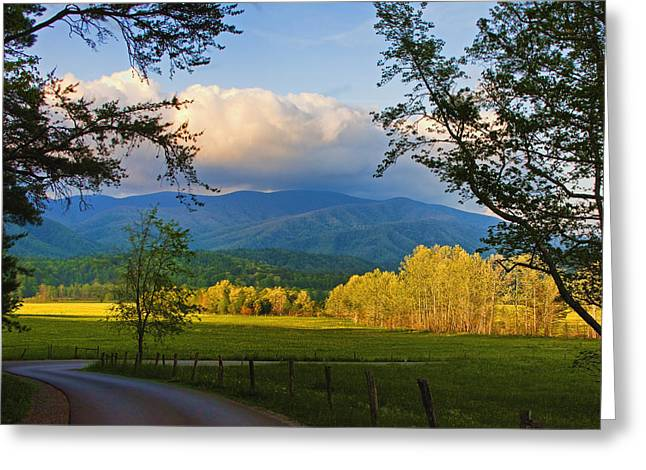 The Long And Winding Road Greeting Card by Dave Bosse