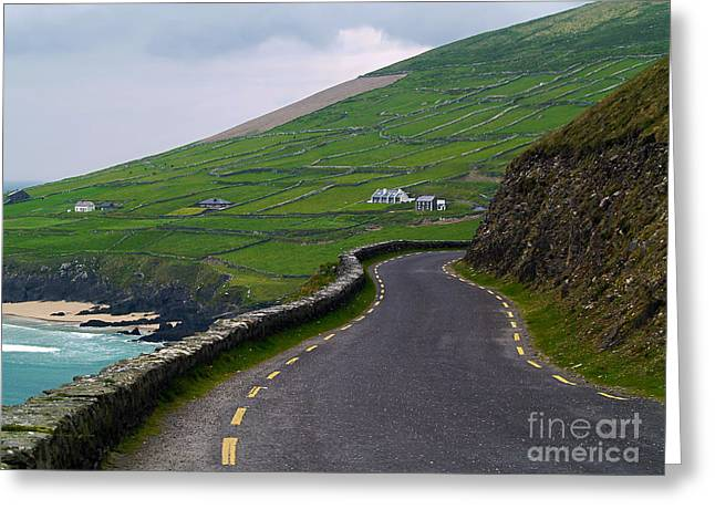 The Long And Winding Road Greeting Card by Patricia Griffin Brett