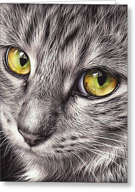 The Look Greeting Card by Elena Kolotusha