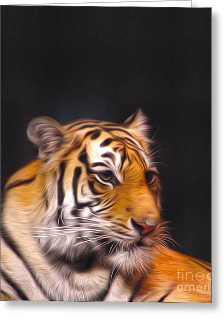 The Look Greeting Card by Nur Roy