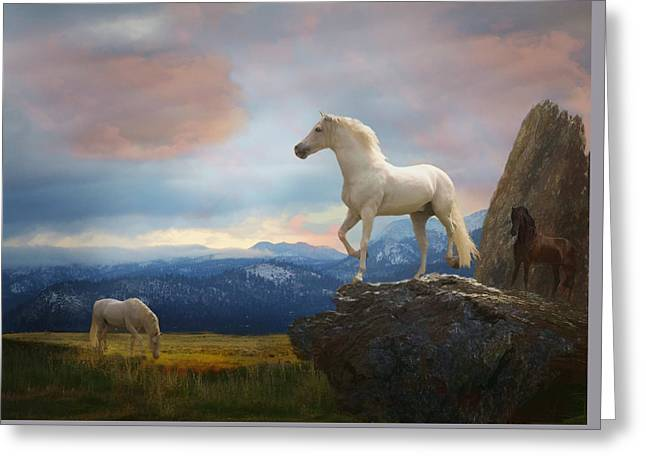 The Look Out Greeting Card by Melinda Hughes-Berland