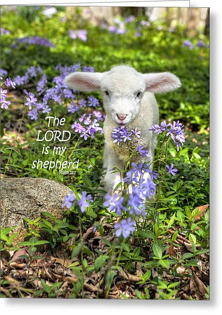 The Lord Is My Shepherd Greeting Card by Cheryl Birkhead