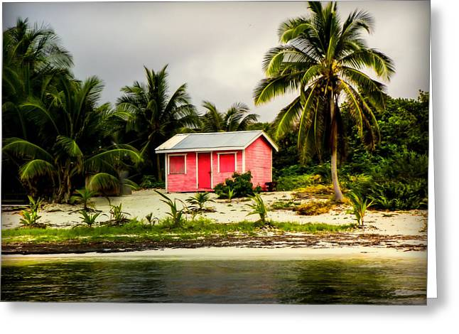 The Love Shack Greeting Card by Karen Wiles