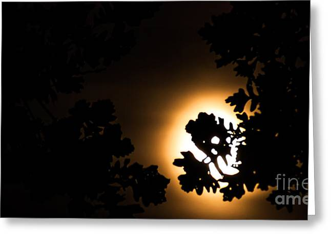 The Lunar Glow Greeting Card by Optical Playground By MP Ray