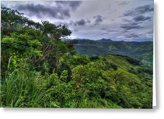The Lush Greens Of Costa Rica Greeting Card by Andres Leon
