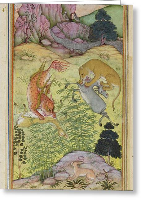 The Lynx And The Lion Greeting Card
