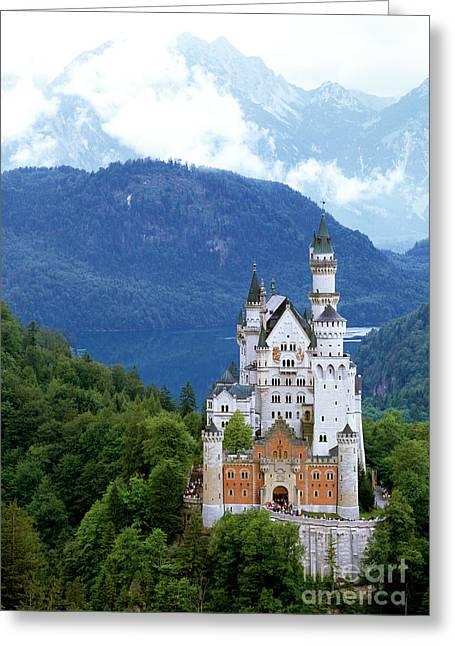 The Magic Kingdom Greeting Card by Timm Chapman