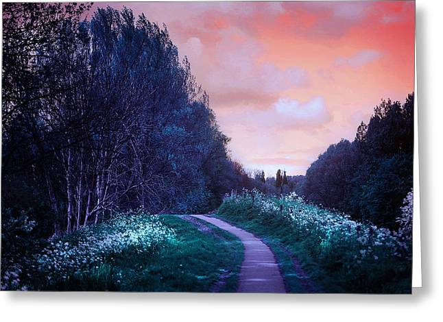 The Magical Path Greeting Card by Jenny Rainbow