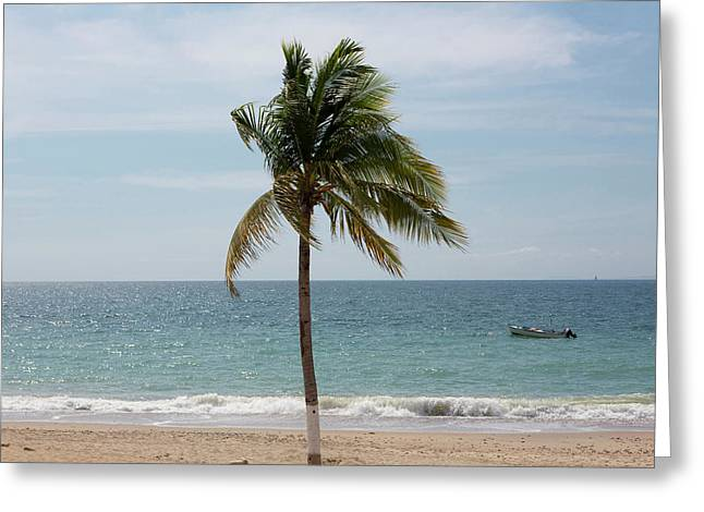 The Malecon, Puerto Vallarta, Jalisco Greeting Card by Douglas Peebles