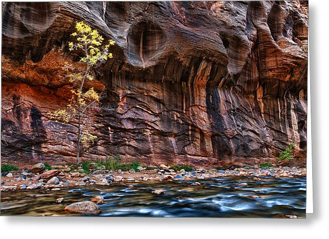 The Mall On The Narrows Greeting Card by Juan Carlos Diaz Parra