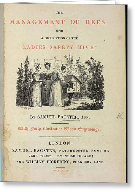 The Management Of Bees Greeting Card by British Library