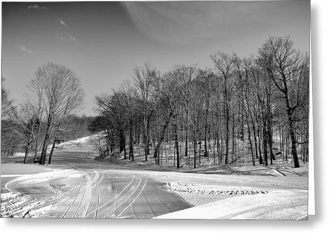The Many Textures Of Mccauley Mountain - Old Forge New York Greeting Card