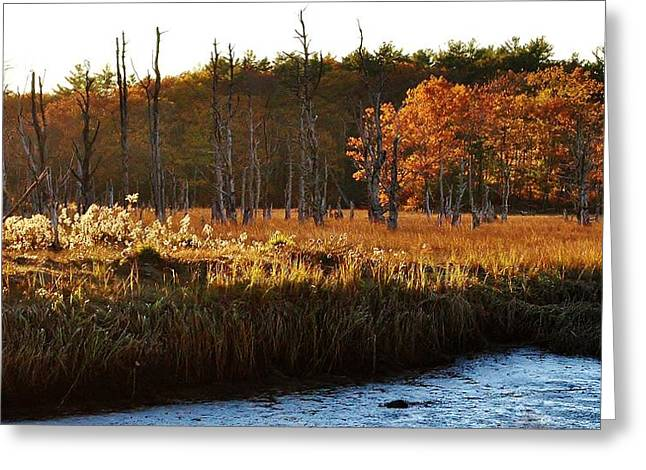 Greeting Card featuring the photograph The Marsh by Paul Noble