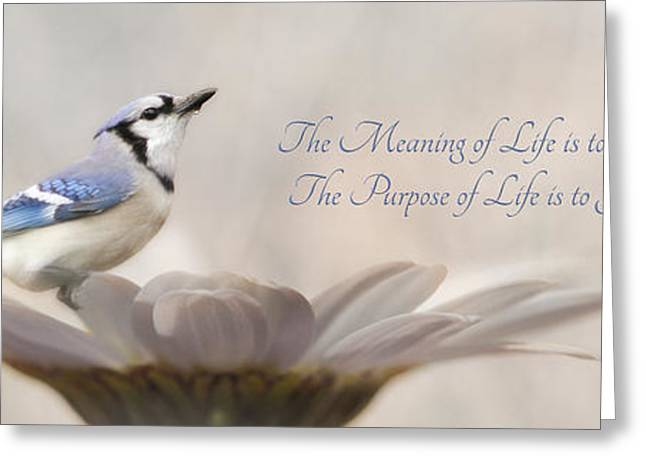 The Meaning Of Life Greeting Card by Lori Deiter
