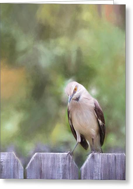 The Mockingbird Greeting Card