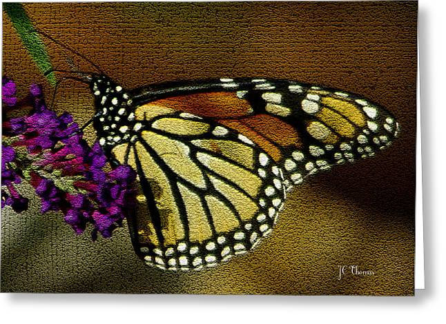 The Monarch / Butterflies Greeting Card