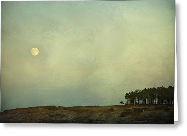 The Moon Above The Trees Greeting Card