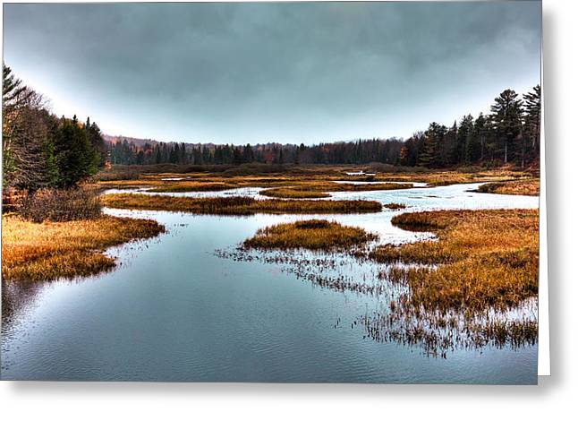 The Moose River - Old Forge New York Greeting Card by David Patterson