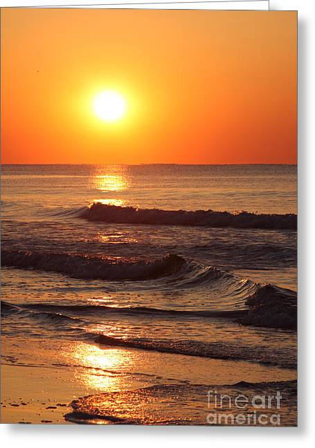 The Morning Tide Greeting Card