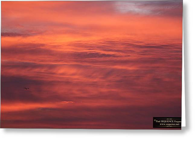 The Morning View 5 Greeting Card by Paul SEQUENCE Ferguson             sequence dot net