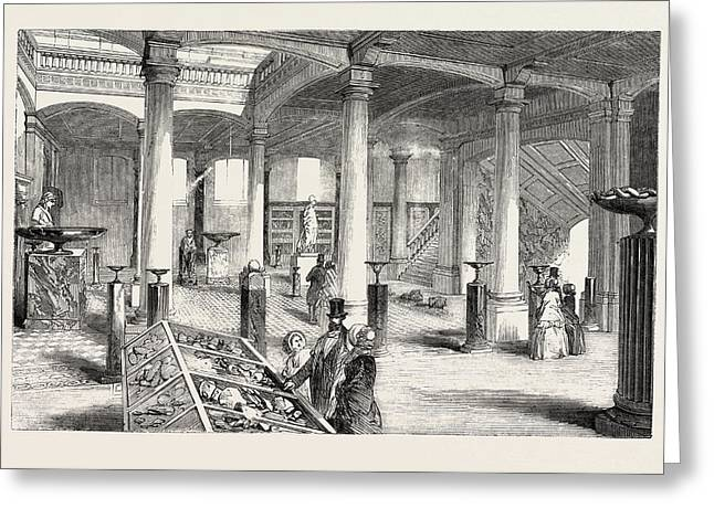 The Museum Of Practical Geology, The Great Hall Greeting Card by English School