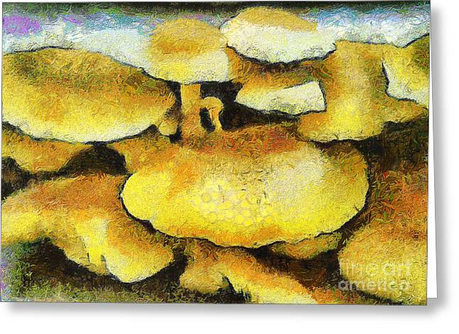 The Mushroom Family Greeting Card by Odon Czintos