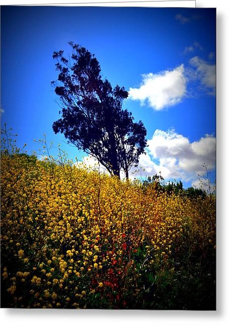 The Mustard Hillside Greeting Card by Lisa Holland-Gillem