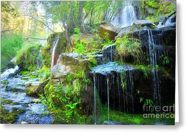 The Naramata Falls  Greeting Card by Tara Turner