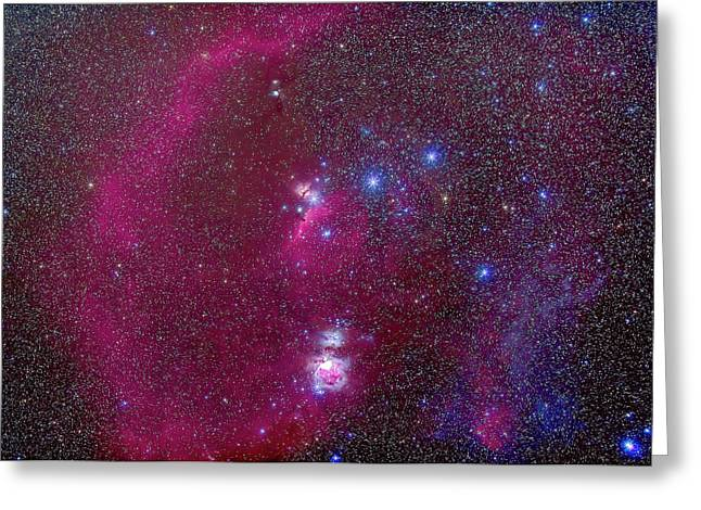 The Nebulas Of Orion Greeting Card by Alan Dyer