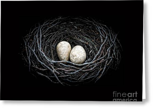 The Nest Greeting Card by Edward Fielding