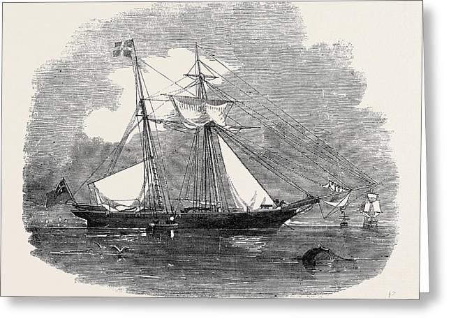 The New Opium Clipper Wild Dayrell Greeting Card
