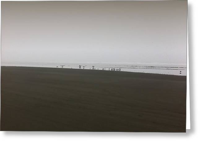 The No3 Ocean Shores Greeting Card by Marcello Cicchini