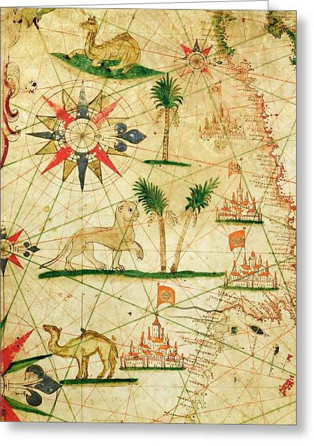 The North Coast Of Africa, From A Nautical Atlas, 1651 Ink On Vellum Greeting Card by Pietro Giovanni Prunes
