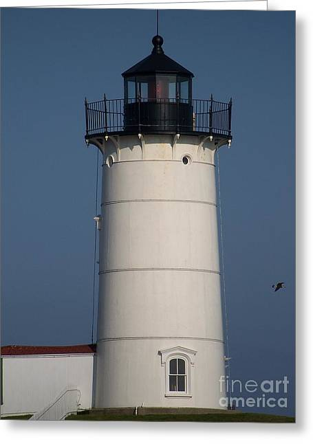 Greeting Card featuring the photograph Lighthouse by Eunice Miller