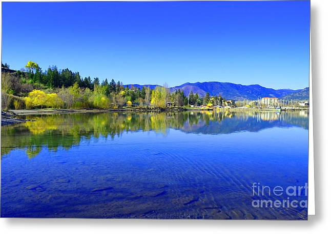The Okanagan Blues Greeting Card by Tara Turner