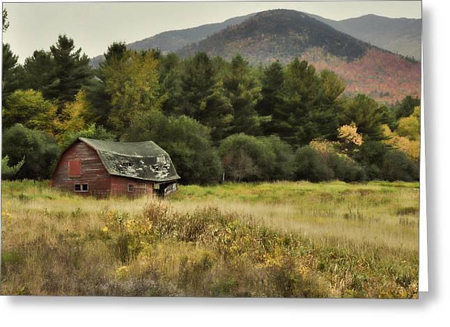 The Old Barn Greeting Card by Nancy De Flon
