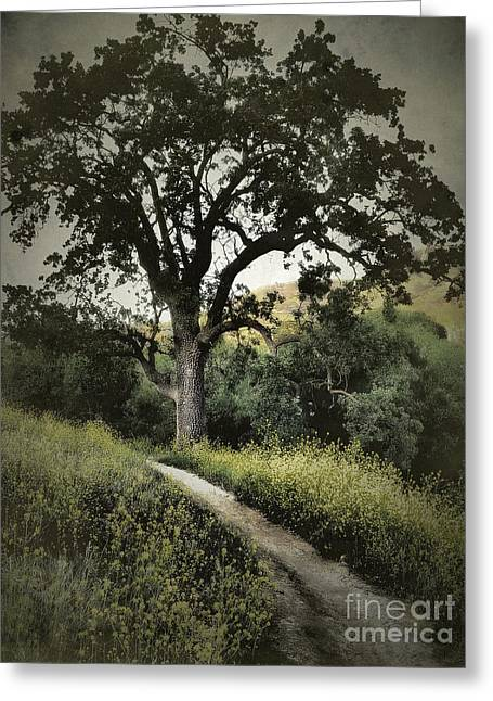 The Old Chumash Trail Greeting Card