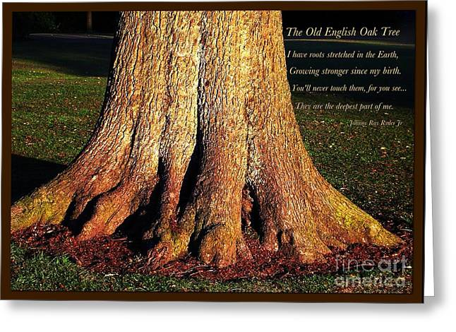 The Old English Oak Tree Greeting Card