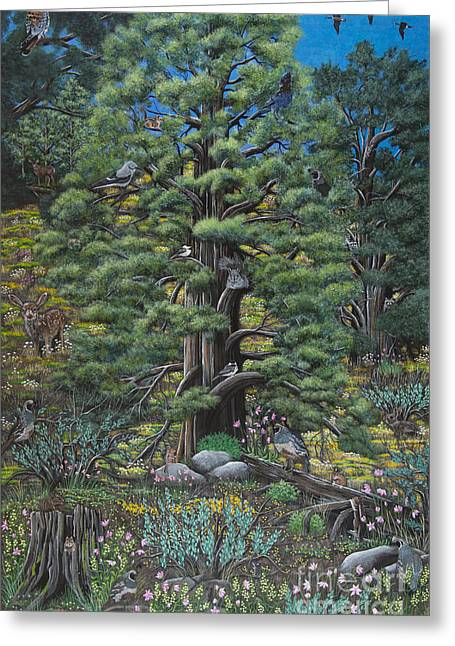 The Old Juniper Tree Greeting Card