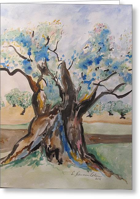 The Old Olive Tree Greeting Card