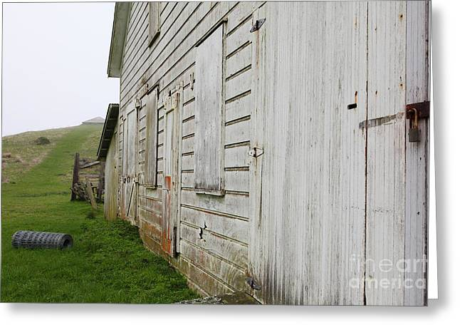 The Old Pierce Point Ranch At Foggy Point Reyes California 5d28130 Greeting Card by Wingsdomain Art and Photography