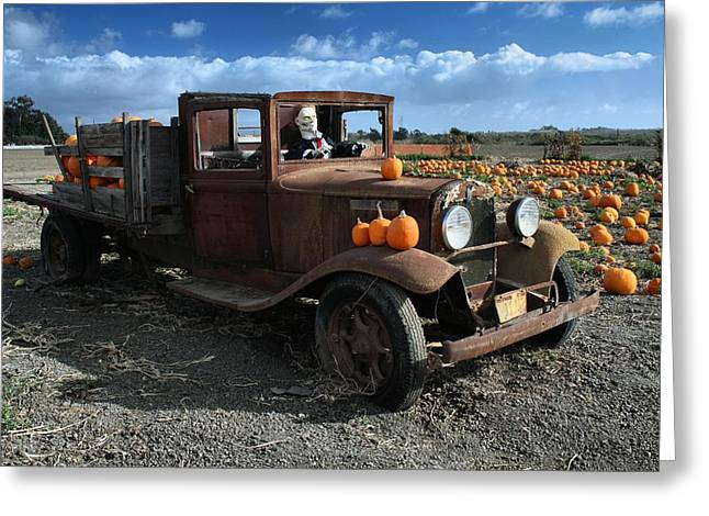 The Old Pumpkin Patch Greeting Card by Michael Gordon